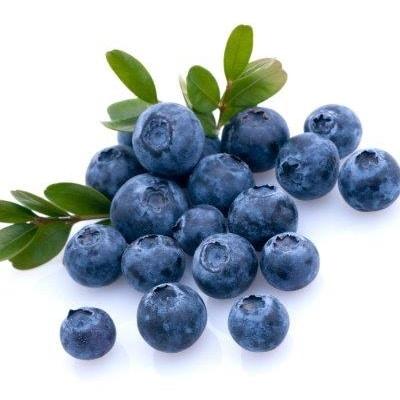 נוזל מילוי לסיגריה אלקטרונית - blueberry
