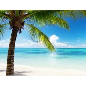 נוזל לסיגריה אלקטרונית - jamaica